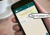 Cara Melihat Chat Whatsapp Orang Lain